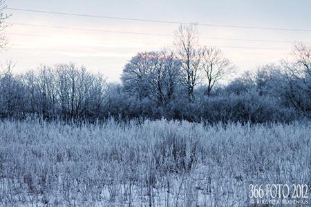 2012_031_0125_vinter