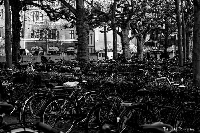 bw_20150316_bikes