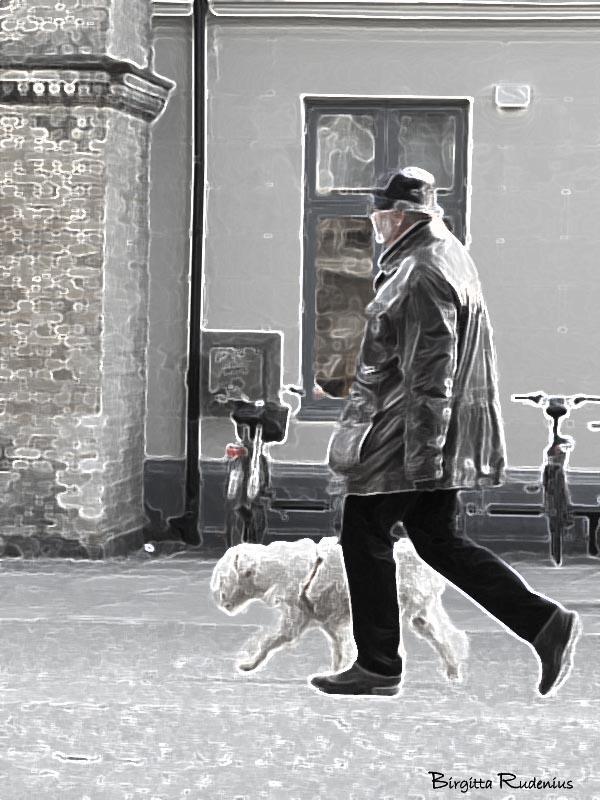 PiPP_20150316_dogwalk