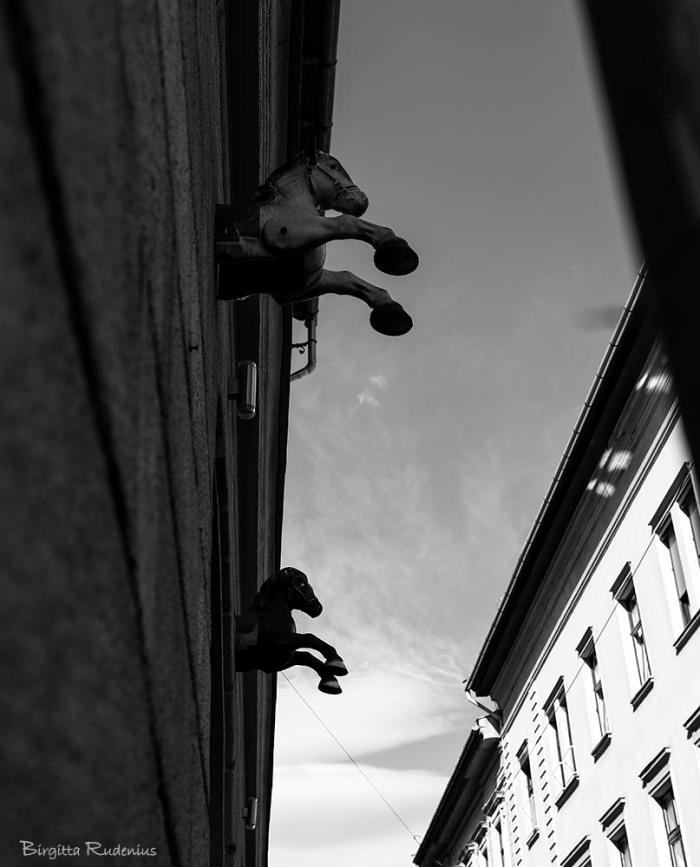 art_20150421_wallhorse