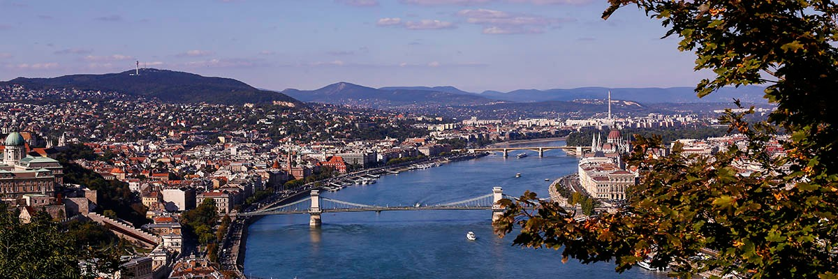 Danube and Bridges