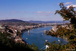 Danube and Bridges