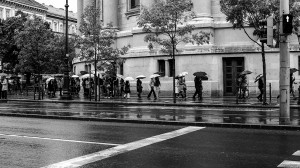 Rainy days need umbrellas