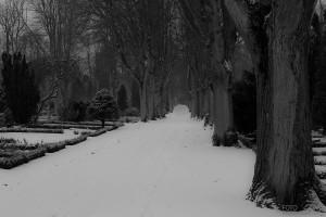 Allé på kyrkogården, Lund