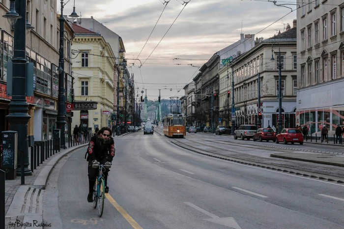 street_20160123_biker