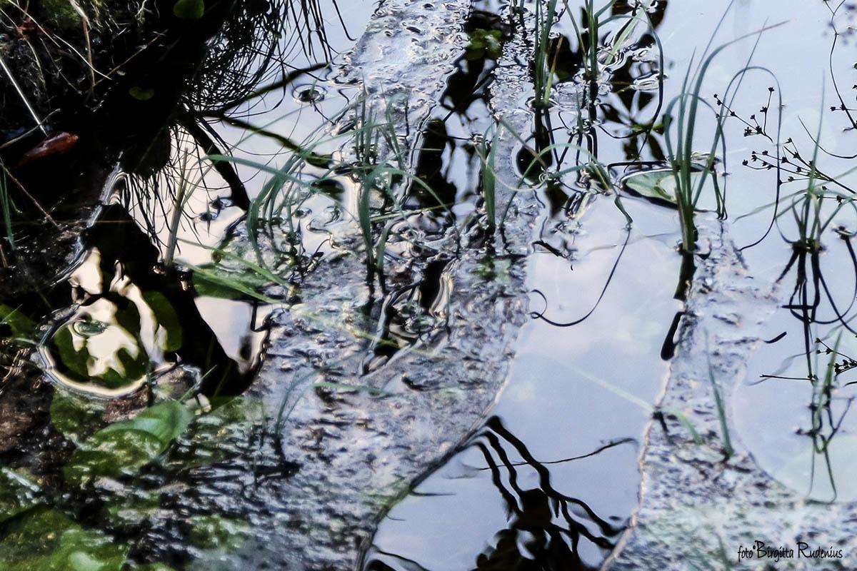 Water Morror